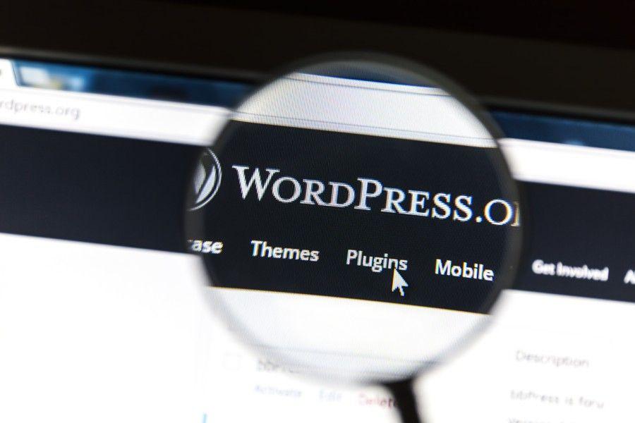 L'archivio demo di WordPress
